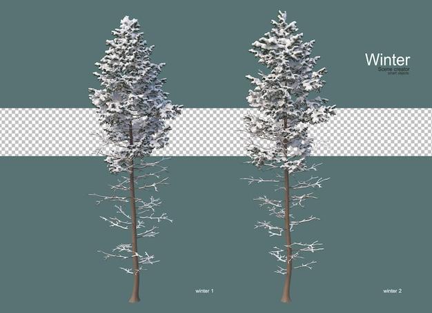 Pini di varie dimensioni in inverno