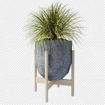 Rappresentazione della pianta 3d