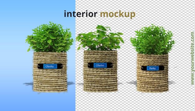 Mockup di piante in rendering 3d