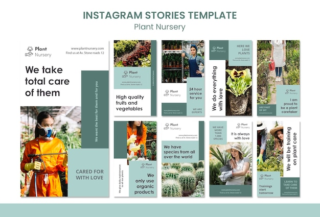 Modello di storie instagram vivaio di piante