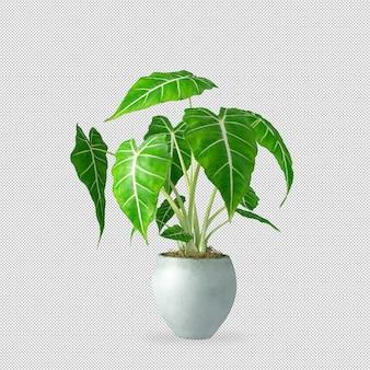 Pianta in vaso nella rappresentazione 3d