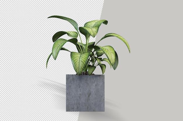 Pianta in vaso nel rendering 3d