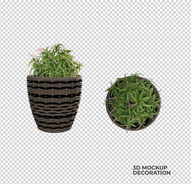 Pianta in vaso decorazione e interior design