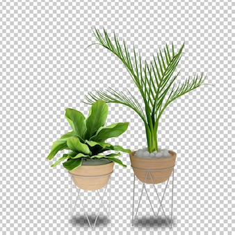 Piante in vaso in 3d rendering isolato