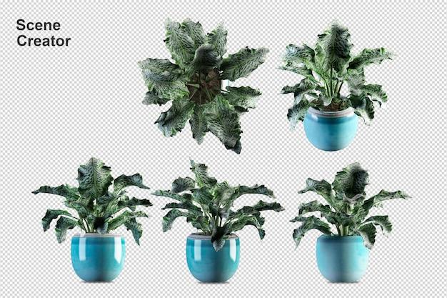 Piante in vaso in 3d rendering