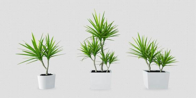 Piante in vasi nella rappresentazione 3d