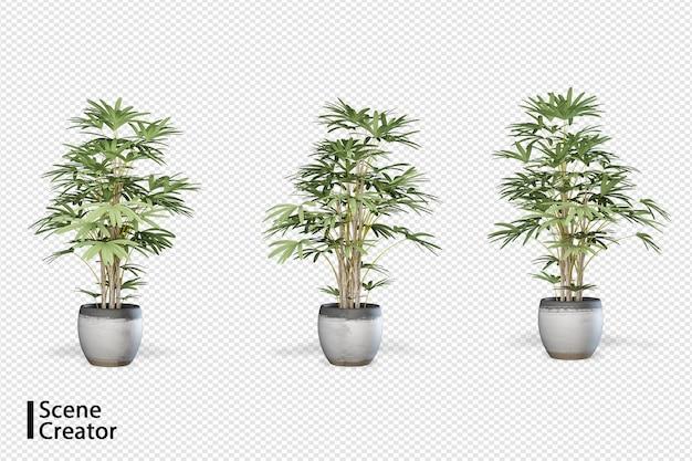 Creatore di scene di piante in varie angolazioni