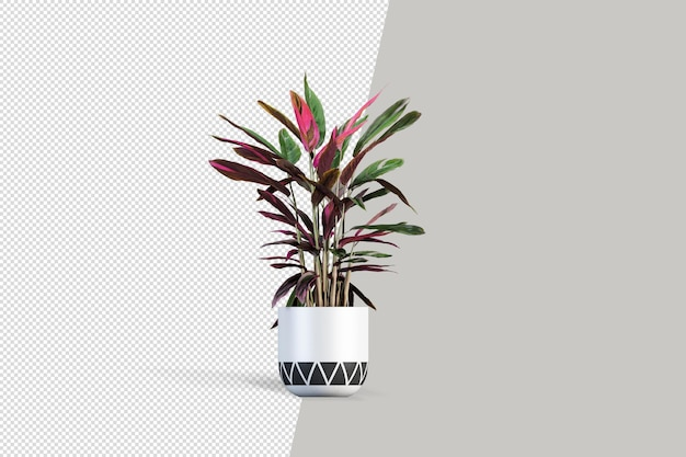 Fiori delle piante in vaso nella rappresentazione 3d isolata Psd Premium