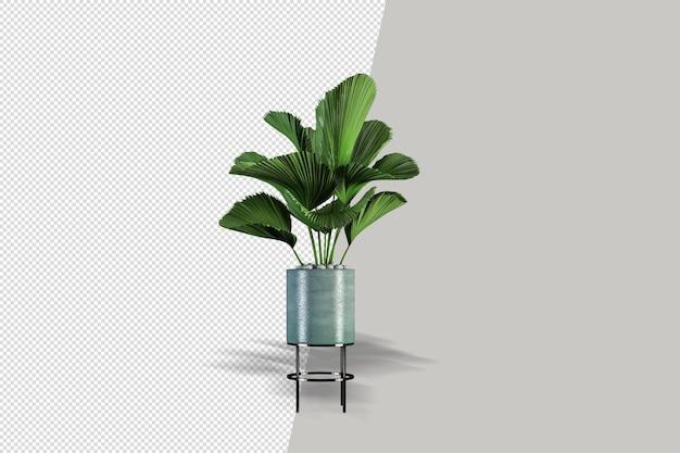 Fiori delle piante in vaso nella rappresentazione 3d isolata
