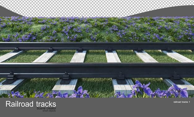 Binari ferroviari in giardini di fiori e arbusti