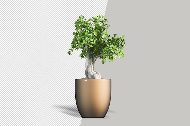 Rendering realistico 3d della pianta in vaso isolata