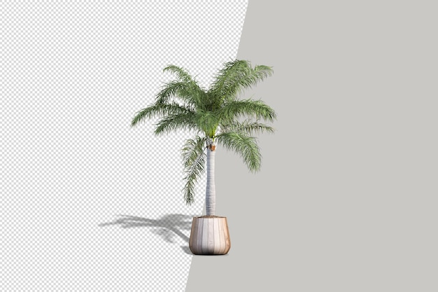 Pianta realistica in rendering 3d
