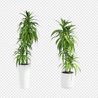 Le piante realistiche in 3d rendono