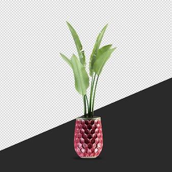 Rendering di vista frontale isometrica pianta isolata
