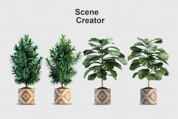 Rendering di piante isolate isometriche