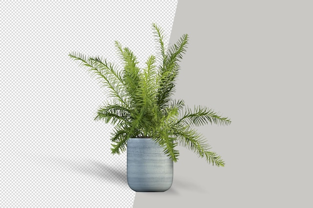 Rendering di piante isolate in vaso