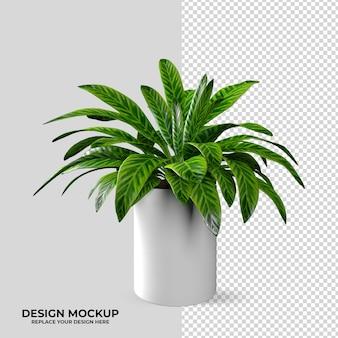 Decorazione di mockup di piante e logo di rendering