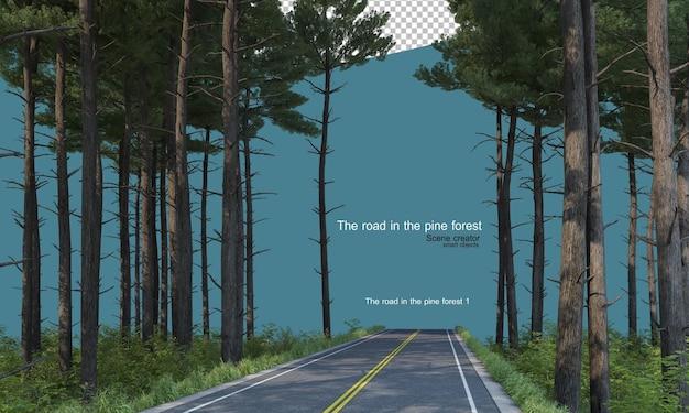 Strada in una pineta