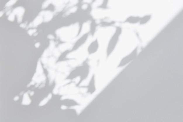 Sovrapposizione di foto d'ombra