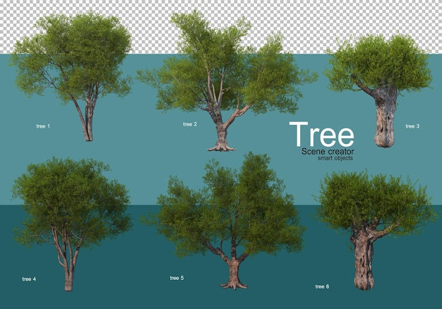Mostra i risultati di una varietà di composizioni di alberi