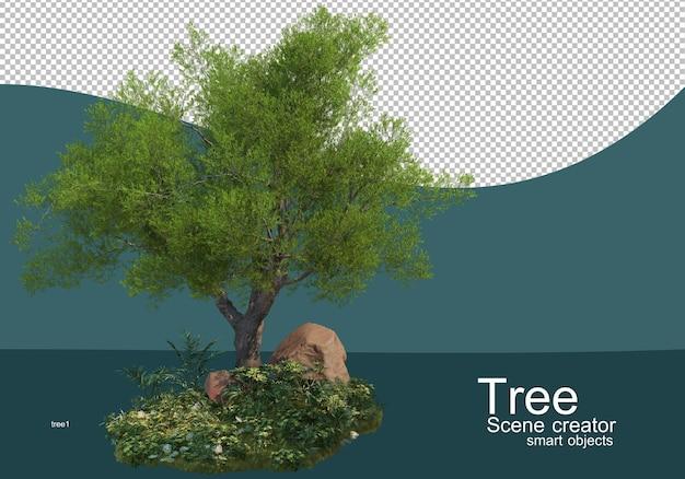 Vengono visualizzati i risultati per le composizioni di alberi e arbusti Psd Premium