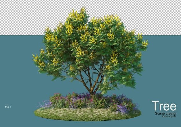 Piccolo giardino fiorito