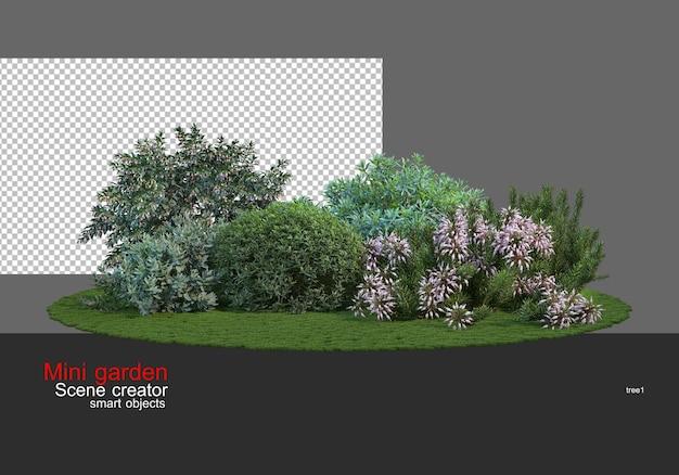 Un piccolo giardino con una grande varietà di alberi