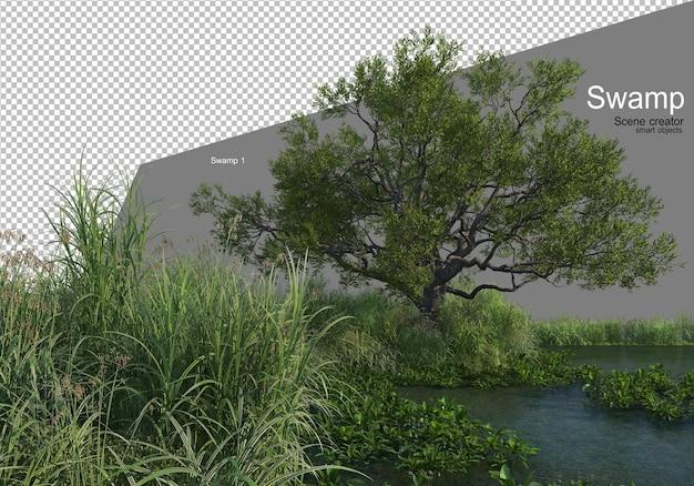 Una palude con una varietà di alberi