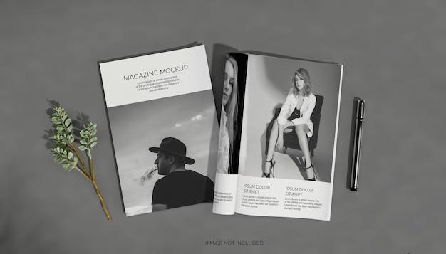 Vista dall'alto di modelli di brochure e cataloghi
