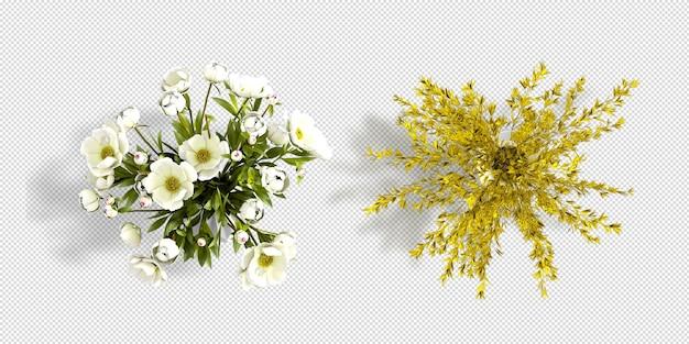 Vista dall'alto fiori in vaso rendering 3d isolato Psd Premium