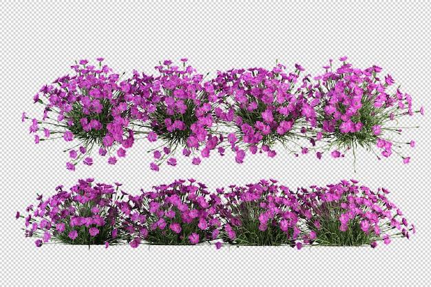 Alberi e fiori tropicali nella rappresentazione 3d isolata