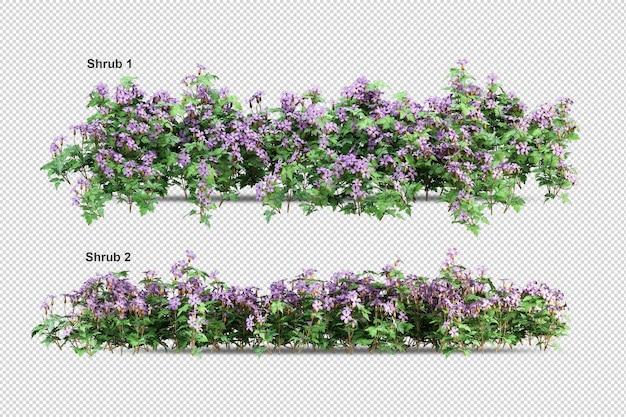 Alberi tropicali e fiori isolati rendering