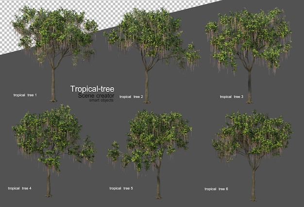 Alberi e piante tropicali nel rendering 3d