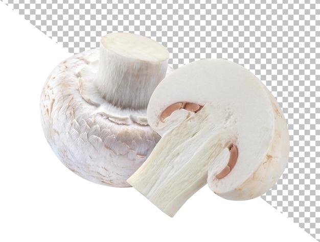 Due funghi champignon isolati