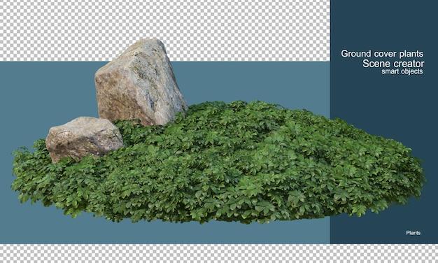 Varietà di rocce nel giardino degli arbusti