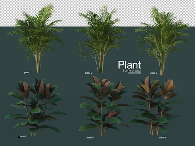 Una varietà di alberi decorativi