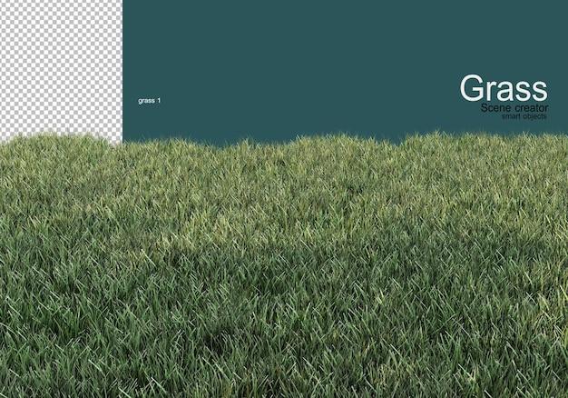 Varietà di design su erba e ghiaia Psd Premium