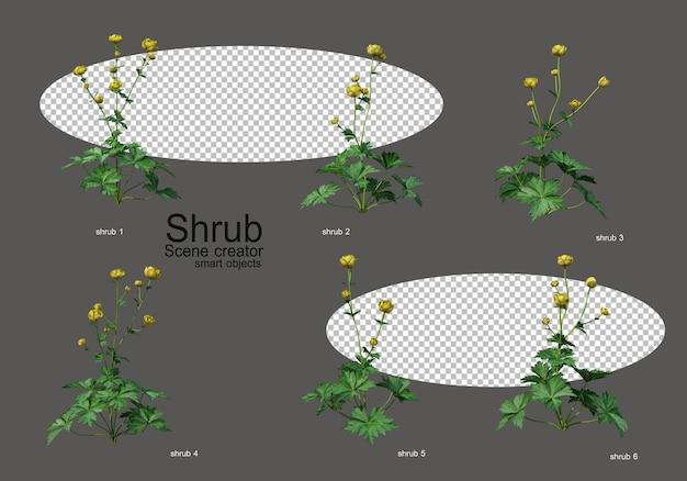 Una varietà di arbusti e fiori