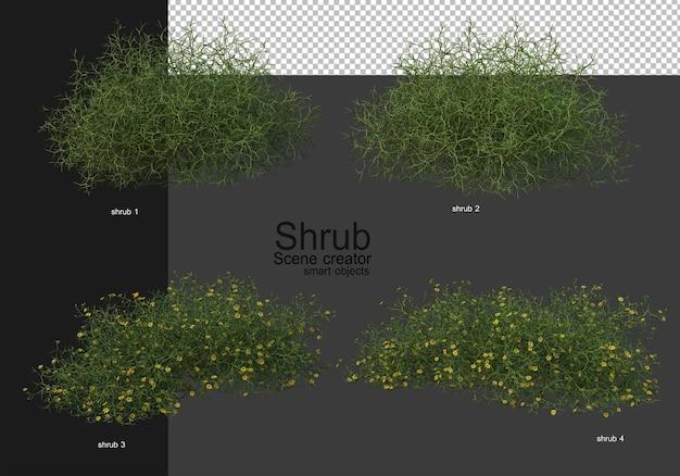 Una varietà di arbusti Psd Premium