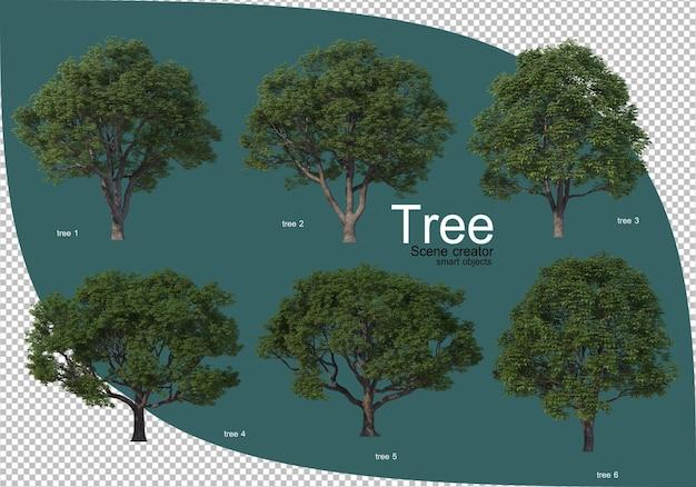 Varietà di alberi nel rendering 3d
