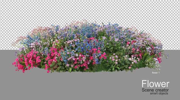 Vari colori di fiori Psd Premium
