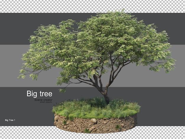 Varie forme di rendering di erba e alberi