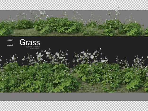 Varie forme di rendering dell'erba
