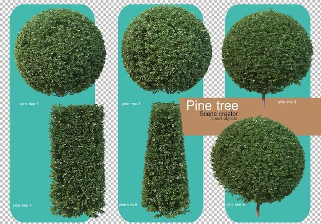 Varie forme di rendering di alberi di pino Psd Premium
