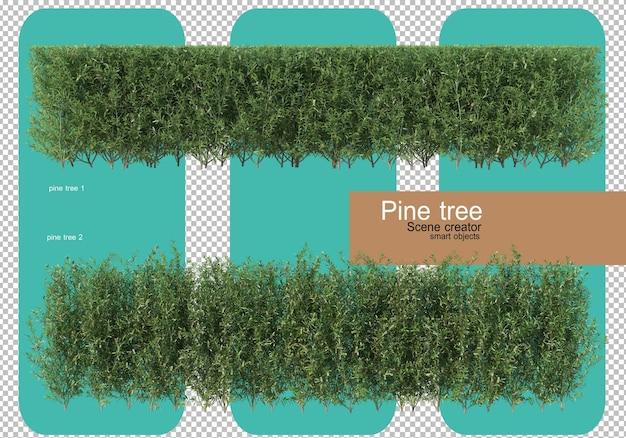 Varie forme di rendering di alberi di pino