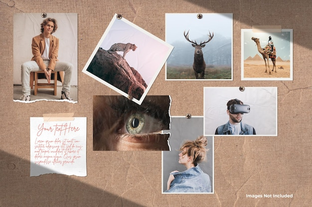 Vari mockup di mood board per set di foto
