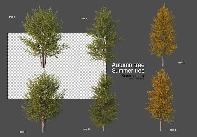 Vari tipi di alberi autunnali ed estivi