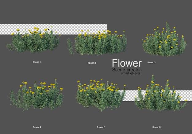 Vari tipi di fiori diversi stili Psd Premium