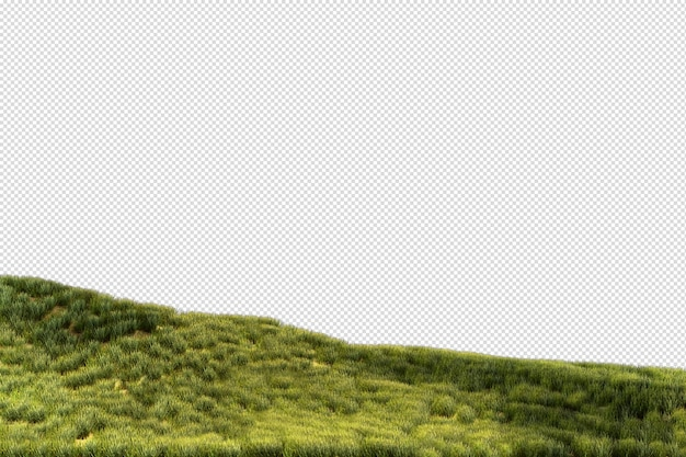 Vari tipi di rendering dell'erba isolati