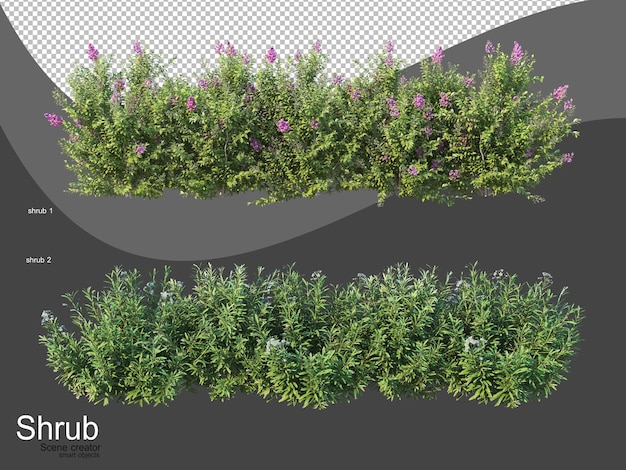 Vari tipi di arbusti Psd Premium